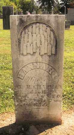 CHAPMAN, HANNAH P. - Trumbull County, Ohio | HANNAH P. CHAPMAN - Ohio Gravestone Photos