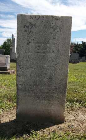 CLARK, DELIA - Trumbull County, Ohio | DELIA CLARK - Ohio Gravestone Photos