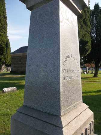 CLARK, ELIZABETH C. - Trumbull County, Ohio | ELIZABETH C. CLARK - Ohio Gravestone Photos