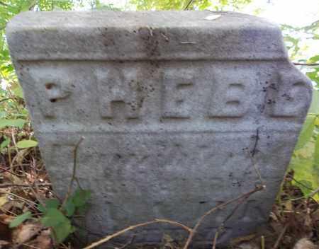 CLARK, PHEBE - Trumbull County, Ohio | PHEBE CLARK - Ohio Gravestone Photos