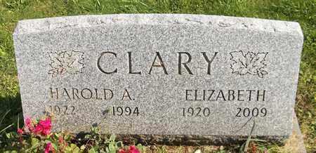 CLARY, ELIZABETH - Trumbull County, Ohio | ELIZABETH CLARY - Ohio Gravestone Photos