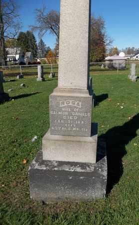 DANIELS, ROSA - Trumbull County, Ohio | ROSA DANIELS - Ohio Gravestone Photos