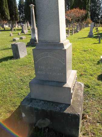 DANIELS, SALMON - Trumbull County, Ohio | SALMON DANIELS - Ohio Gravestone Photos