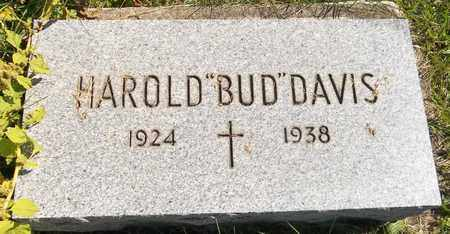 DAVIS, HAROLD - Trumbull County, Ohio | HAROLD DAVIS - Ohio Gravestone Photos