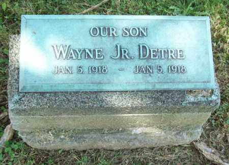 DETRE, WAYNE JR. - Trumbull County, Ohio | WAYNE JR. DETRE - Ohio Gravestone Photos