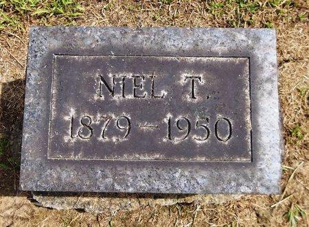 DEWITT, NIEL T. - Trumbull County, Ohio | NIEL T. DEWITT - Ohio Gravestone Photos