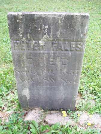 FALES, PETER, IV - Trumbull County, Ohio   PETER, IV FALES - Ohio Gravestone Photos