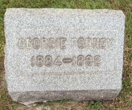 FORNEY, GEORGE - Trumbull County, Ohio | GEORGE FORNEY - Ohio Gravestone Photos