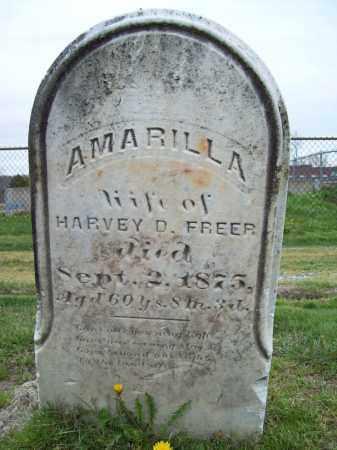 FREER, AMARILLA - Trumbull County, Ohio | AMARILLA FREER - Ohio Gravestone Photos