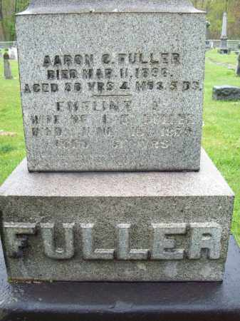 FULLER, EMELINE E. - Trumbull County, Ohio | EMELINE E. FULLER - Ohio Gravestone Photos