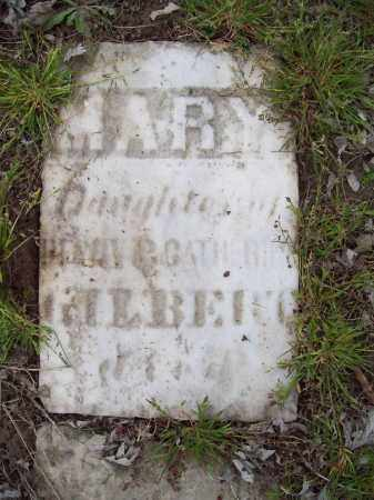 GILBERT, MARY - Trumbull County, Ohio | MARY GILBERT - Ohio Gravestone Photos