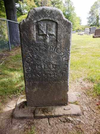 GILFILLEN, JAMES - Trumbull County, Ohio | JAMES GILFILLEN - Ohio Gravestone Photos