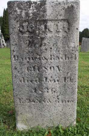 GILSON, JOHN F. - Trumbull County, Ohio | JOHN F. GILSON - Ohio Gravestone Photos