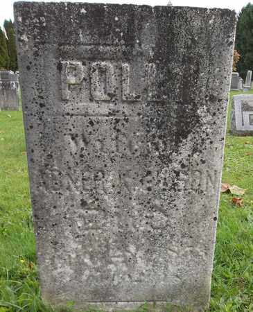 GILSON, POLLY - Trumbull County, Ohio | POLLY GILSON - Ohio Gravestone Photos