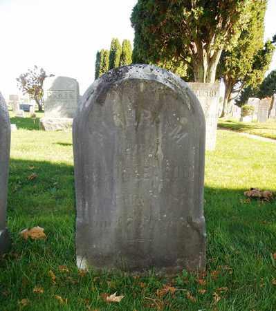 GLEASON, ALMIRA - Trumbull County, Ohio | ALMIRA GLEASON - Ohio Gravestone Photos