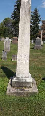 GRANGER, PHEBE - Trumbull County, Ohio | PHEBE GRANGER - Ohio Gravestone Photos