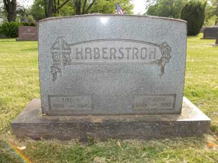 HABERSTROH, EMELIA - Trumbull County, Ohio | EMELIA HABERSTROH - Ohio Gravestone Photos