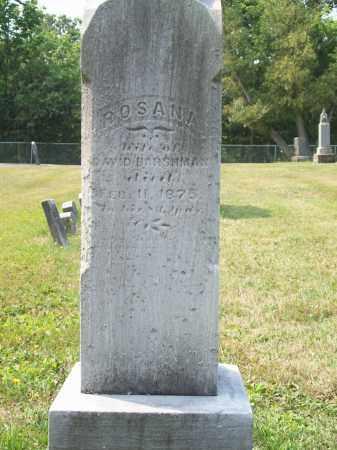 HARSHMAN, ROSANNA - Trumbull County, Ohio | ROSANNA HARSHMAN - Ohio Gravestone Photos