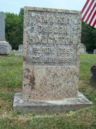 OSBORN HAUGHTON, AMANDA - Trumbull County, Ohio | AMANDA OSBORN HAUGHTON - Ohio Gravestone Photos