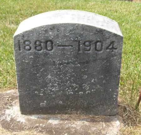 HAUGHTON, WILLIAM BOYD - Trumbull County, Ohio | WILLIAM BOYD HAUGHTON - Ohio Gravestone Photos