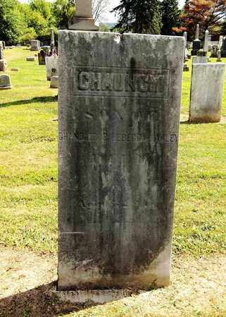 HAWLEY, CHAUNCEY - Trumbull County, Ohio | CHAUNCEY HAWLEY - Ohio Gravestone Photos