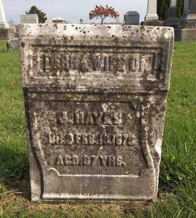 HAYES, DEBRA - Trumbull County, Ohio | DEBRA HAYES - Ohio Gravestone Photos