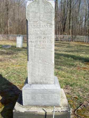 HIGGINS, ANGELINE - Trumbull County, Ohio | ANGELINE HIGGINS - Ohio Gravestone Photos