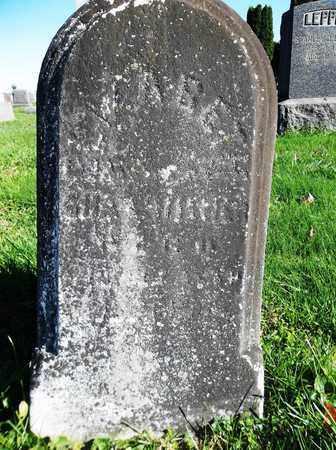 HILLIER, ELIZABETH - Trumbull County, Ohio | ELIZABETH HILLIER - Ohio Gravestone Photos