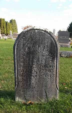 HOLBROOK, RALPH - Trumbull County, Ohio | RALPH HOLBROOK - Ohio Gravestone Photos