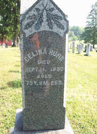 HURD, CELINA - Trumbull County, Ohio | CELINA HURD - Ohio Gravestone Photos