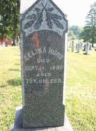 HURD, CELINA - Trumbull County, Ohio   CELINA HURD - Ohio Gravestone Photos