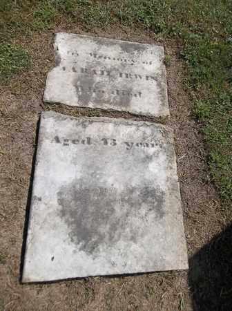 IRWIN, SARAH - Trumbull County, Ohio | SARAH IRWIN - Ohio Gravestone Photos