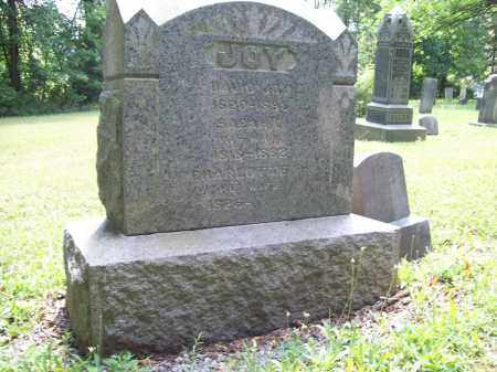 RICE JOY, CHARLOTTE - Trumbull County, Ohio | CHARLOTTE RICE JOY - Ohio Gravestone Photos
