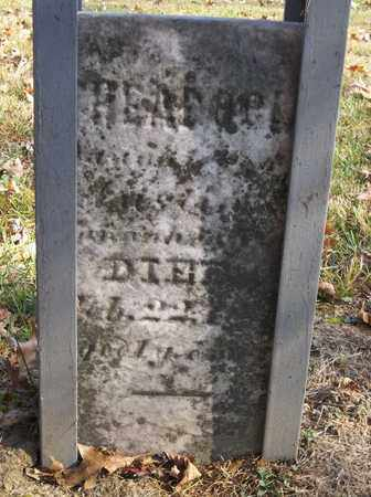 KNOX, THEODOCIA - Trumbull County, Ohio | THEODOCIA KNOX - Ohio Gravestone Photos