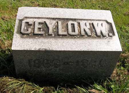 LAIRD, CEYLON W. - Trumbull County, Ohio | CEYLON W. LAIRD - Ohio Gravestone Photos
