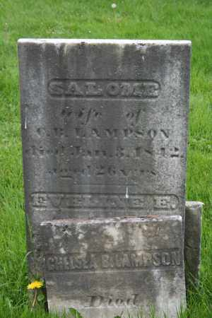LAMPSON, SALOME - Trumbull County, Ohio | SALOME LAMPSON - Ohio Gravestone Photos