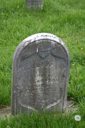 LAMSON, OLIVE - Trumbull County, Ohio | OLIVE LAMSON - Ohio Gravestone Photos