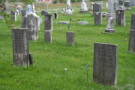 LAMSON, SALOME - Trumbull County, Ohio | SALOME LAMSON - Ohio Gravestone Photos