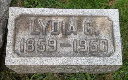 LEWIS, LYDIA C. - Trumbull County, Ohio | LYDIA C. LEWIS - Ohio Gravestone Photos
