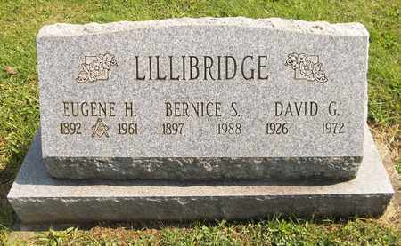 LILLIBRIDGE, DAVID G. - Trumbull County, Ohio | DAVID G. LILLIBRIDGE - Ohio Gravestone Photos