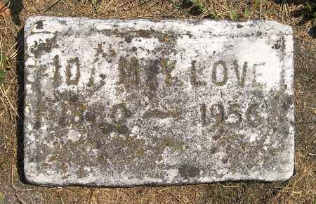 LOVE, IDA MAY - Trumbull County, Ohio | IDA MAY LOVE - Ohio Gravestone Photos