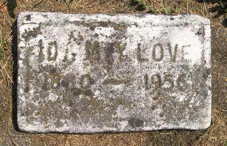 LOVE, IDA MAY - Trumbull County, Ohio | IDA MAY LOVE - Ohio Gravestone Photos