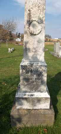 LYMAN, CELIA A. - Trumbull County, Ohio | CELIA A. LYMAN - Ohio Gravestone Photos