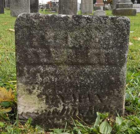 LYMAN, FRANCES ELIZABETH - Trumbull County, Ohio | FRANCES ELIZABETH LYMAN - Ohio Gravestone Photos