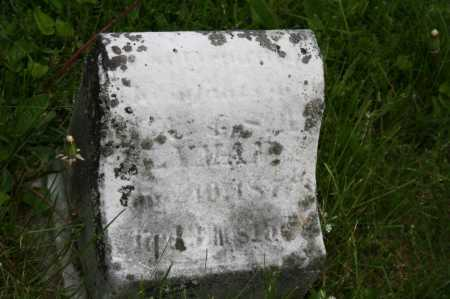 LYMAN, INFANT - Trumbull County, Ohio | INFANT LYMAN - Ohio Gravestone Photos