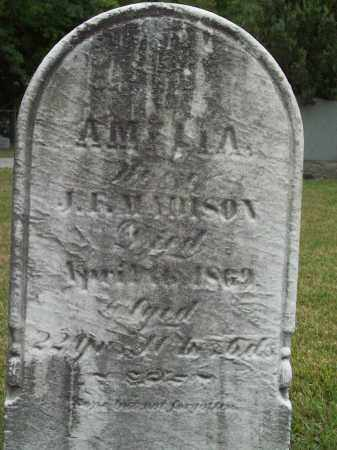 MADISON, AMELIA - Trumbull County, Ohio | AMELIA MADISON - Ohio Gravestone Photos