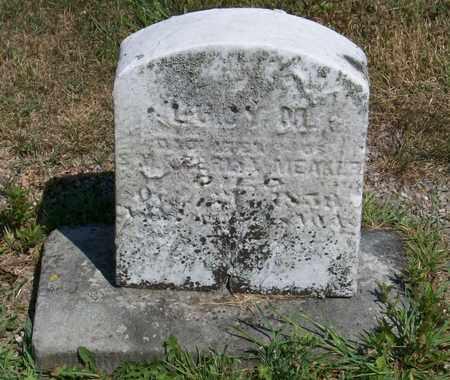 MEAKER, LUCY - Trumbull County, Ohio   LUCY MEAKER - Ohio Gravestone Photos