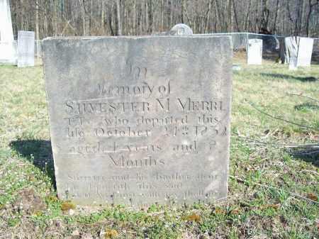 MERRITT, SYLVESTER M. - Trumbull County, Ohio | SYLVESTER M. MERRITT - Ohio Gravestone Photos
