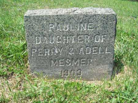 MESMER, PAULINE - Trumbull County, Ohio | PAULINE MESMER - Ohio Gravestone Photos