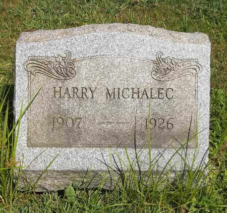 MICHALEC, HARRY - Trumbull County, Ohio | HARRY MICHALEC - Ohio Gravestone Photos